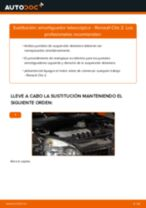 Cambiar Amortiguadores RENAULT CLIO: manual de taller