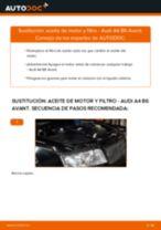 Cómo cambiar Filtro aceite AUDI A4 Avant (8E5, B6) - manual en línea