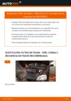 PDF manual sobre mantenimiento Vectra C CC (Z02) 2.0 16V Turbo (F68)