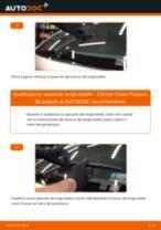 PDF manuale sulla manutenzione XSARA