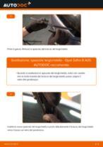 Come cambiare spazzole tergicristallo della parte posteriore su Opel Zafira B A05 - Guida alla sostituzione