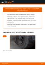 Byta fjäderbenslagring fram på Opel Corsa C – utbytesguide
