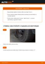 Ako vymeniť a regulovať Lozisko kolesa OPEL CORSA: sprievodca pdf
