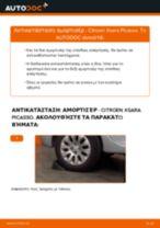 Τοποθέτησης Αμορτισέρ CITROËN XSARA PICASSO (N68) - βήμα - βήμα εγχειρίδια