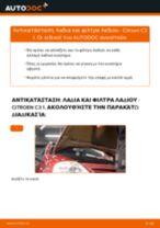 Citroen Berlingo Φορτηγό πλατφόρμα φροντιστήριο επισκευής και εγχειριδιο