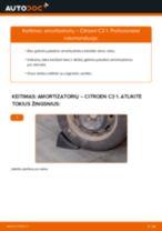 Kaip pakeisti Citroen C3 1 amortizatorių: galas - keitimo instrukcija