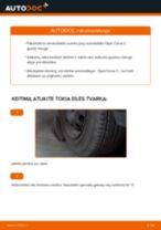 Kaip pakeisti Opel Corsa C rato guolio: priekis - keitimo instrukcija