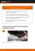 DIY-Leitfaden zum Wechsel von Schraube, Gelenkwellenflansch beim LANCIA MUSA 2012