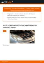 Cómo cambiar: filtro de combustible - Citroen Xsara Picasso | Guía de sustitución