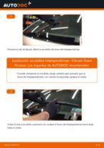 Cómo cambiar: escobillas limpiaparabrisas de la parte trasera - Citroen Xsara Picasso | Guía de sustitución