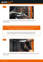 Cómo cambiar: escobillas limpiaparabrisas de la parte delantera - Citroen Xsara Picasso | Guía de sustitución