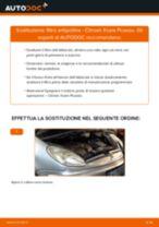 Guida passo passo alla riparazione Citroen Berlingo mk2