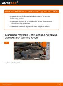 Wie der Wechsel durchführt wird: Stoßdämpfer 1.2 (F08, F68) Opel Corsa C tauschen