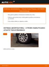 Kaip atlikti keitimą: 2.0 HDi Citroen Xsara Picasso Amortizatorius