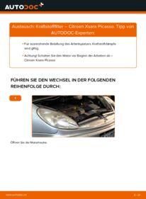 Wie der Wechsel durchführt wird: Kraftstofffilter 2.0 HDi Citroen Xsara Picasso tauschen