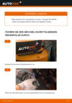 FORD Tourneo Courier Lagerung Radlagergehäuse: Online-Handbuch zum Selbstwechsel