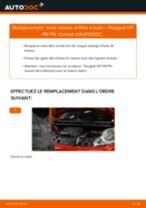 PDF manuel de remplacement: Filtre à huile PEUGEOT 107 3/5 portes (PM_, PN_)