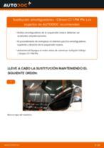 PDF manual de reemplazo: Amortiguador CITROËN C1 (PM_, PN_) delanteros y traseros