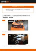 PDF manual de reemplazo: Limpiaparabrisas CITROËN C1 (PM_, PN_) delanteras y traseras