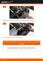 Cómo cambiar: escobillas limpiaparabrisas de la parte delantera - Citroen C1 1 PM PN | Guía de sustitución