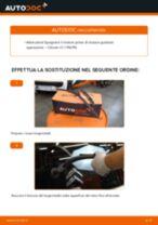 Come cambiare spazzole tergicristallo della parte posteriore su Citroen C1 1 PM PN - Guida alla sostituzione