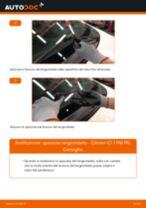 Come cambiare spazzole tergicristallo della parte anteriore su Citroen C1 1 PM PN - Guida alla sostituzione