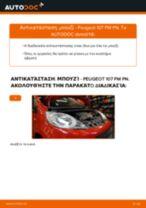 PDF εγχειρίδιο αντικατάστασης: Μπουζί PEUGEOT 107 Hatchback (PM_, PN_)