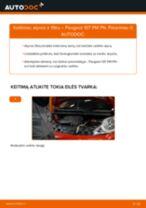 Kaip pakeisti Peugeot 107 PM PN variklio alyvos ir alyvos filtra - keitimo instrukcija