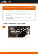 Instrukcijos PDF apie C1 priežiūrą