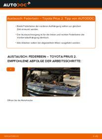 Wie der Wechsel durchführt wird: Stoßdämpfer 1.5 (NHW2_) Toyota Prius 2 tauschen