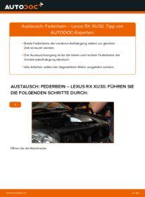Wie der Wechsel durchführt wird: Stoßdämpfer 3.3 400h AWD Lexus RX XU30 tauschen