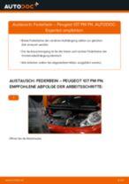 Skoda Octavia 1z3 Türgriff wechseln links + rechts Anleitung pdf