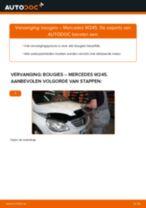PDF handleiding voor vervanging: Bougies MERCEDES-BENZ B-Klasse (W245)