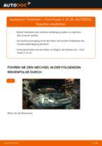 Fiat Ducato 250 Bus Getriebehalter: Online-Handbuch zum Selbstwechsel