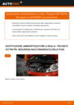 PEUGEOT 107 Ammortizzatori sostituzione: tutorial PDF passo-passo