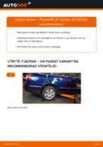 PDF guide för byta: Spiralfjäder VW Passat Variant (3C5) bak och fram