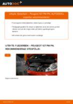 Steg-för-steg-guide i PDF om att byta Stötdämpare i PEUGEOT 107