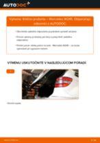 Podrobný PDF tutorial k výmene MERCEDES-BENZ B-CLASS (W245) Tlmič pruzenia