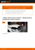 DENSO IK20TT pre Trieda B (W245) | PDF návod na výmenu