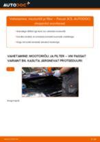 Sissepritsedüüs vahetus: pdf juhend VW PASSAT
