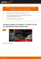 Kaip pakeisti Peugeot 107 PM PN pakabos statramstis: priekis - keitimo instrukcija