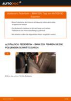 Wie BMW E39 Federbein hinten wechseln - Anleitung