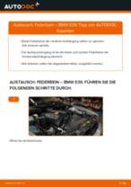 Wie BMW E39 Federbein vorne wechseln - Anleitung