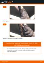 Come cambiare spazzole tergicristallo della parte posteriore su Audi A3 8PA - Guida alla sostituzione