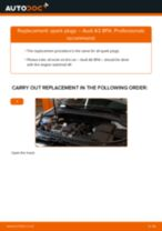 Fitting Stabilizer bushes AUDI A3 Sportback (8PA) - step-by-step tutorial