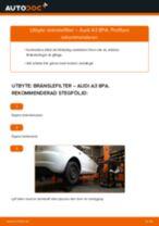 MANN-FILTER WK 853/3 x för A3 Sportback (8PA) | PDF instruktioner för utbyte