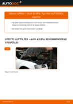 Montering Luftfilter AUDI A3 Sportback (8PA) - steg-för-steg-guide