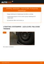 PDF med trinn for trinn-veiledning for bytte av AUDI A3 Sportback (8PA) Støtdemper