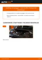 Bytte Tennplugg AUDI gjør-det-selv - manualer pdf på nett