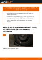 Δωρεάν οδηγίες για Ακρα ζαμφορ AUDI A3 Sportback (8PA) αλλάξετε